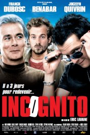 background picture for movie Incognito