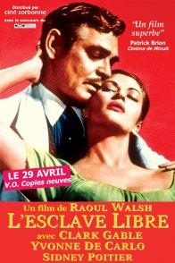 Affiche du film : L'Esclave libre