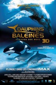 Affiche du film : Dauphins et Baleines 3D, nomades des Mers