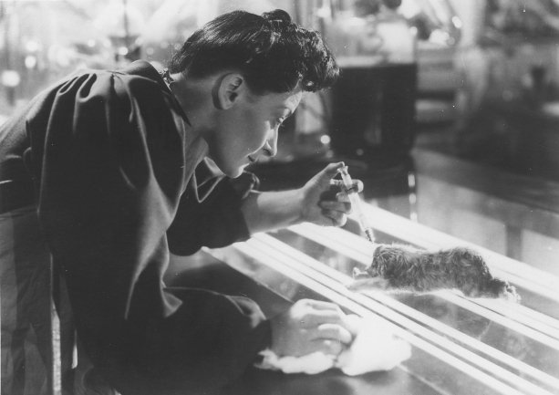 Photo dernier film Tod Browning