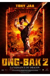background picture for movie Ong-Bak 2, la naissance du dragon