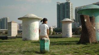 Affiche du film : Portrait de femmes chinoises