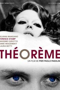 Affiche du film : Théorème