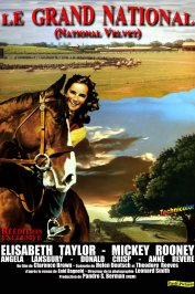background picture for movie Le Grand national