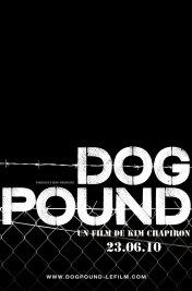 Affiche du film : Dog Pound