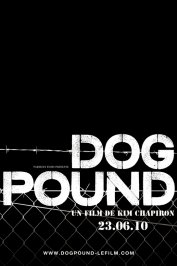 background picture for movie Dog Pound
