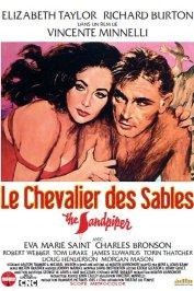 background picture for movie Le Chevalier des sables