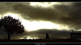 Affiche du film : Les murmures du vent