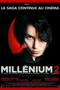 Affiche du film : Millenium 2 - La Fille qui rêvait d'un bidon d'essence et d'une allumette