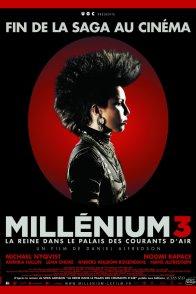 Affiche du film : Millenium 3 - La Reine dans le palais des courants d'air