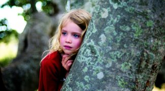 Affiche du film : L'arbre
