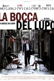 background picture for movie La bocca del lupo