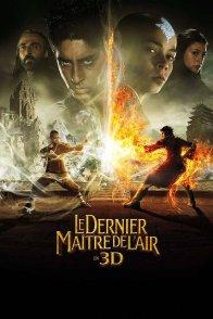 Affiche du film : Le Dernier maître de l'air