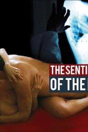 background picture for movie Le sentiment de la chair