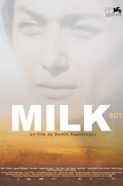 background picture for movie Milk