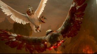 Affiche du film : Le royaume de Ga'Hoole - la légende des gardiens