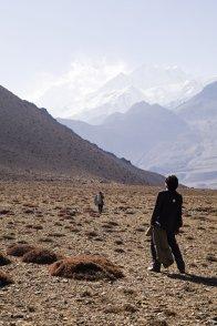 Affiche du film : Destination Himalaya