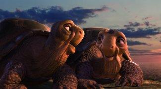 Affiche du film : Animaux et cie 3D