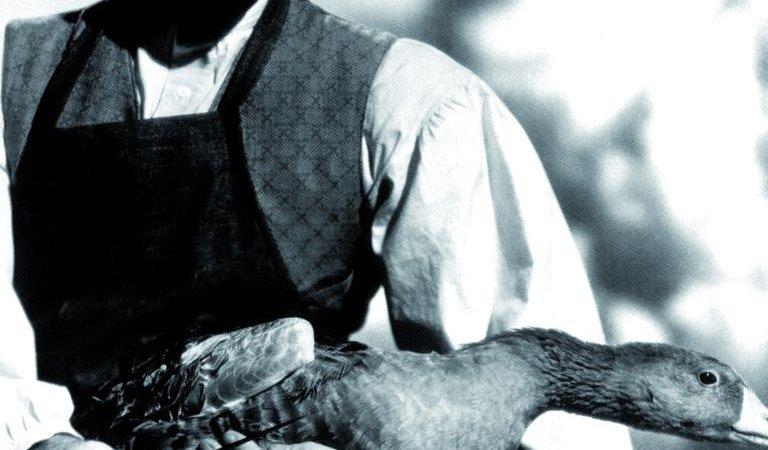 Photo dernier film Paulette Goddard
