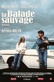 Affiche du film : La balade sauvage
