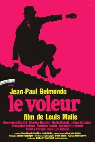 Affiche du film : Le Voleur