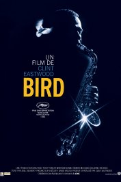 background picture for movie Bird