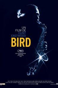 Affiche du film : Bird