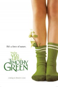 Affiche du film : The Odd Life of Timothy Green