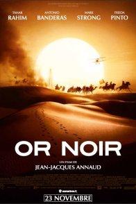 Affiche du film : Or Noir