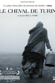 background picture for movie Le cheval de Turin