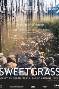 Affiche du film : Sweetgrass
