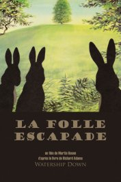 background picture for movie La folle escapade