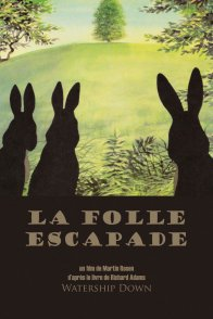 Affiche du film : La folle escapade