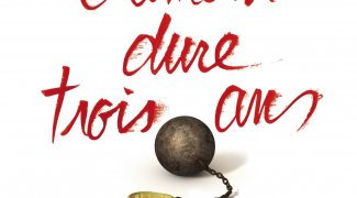 Affiche du film : L'Amour dure trois ans