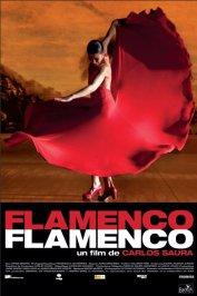 background picture for movie Flamenco Flamenco