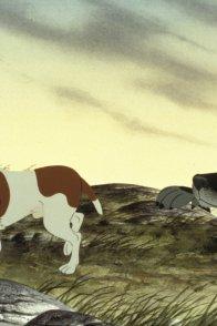Affiche du film : The plague dogs