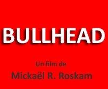 Affiche du film : Bullhead