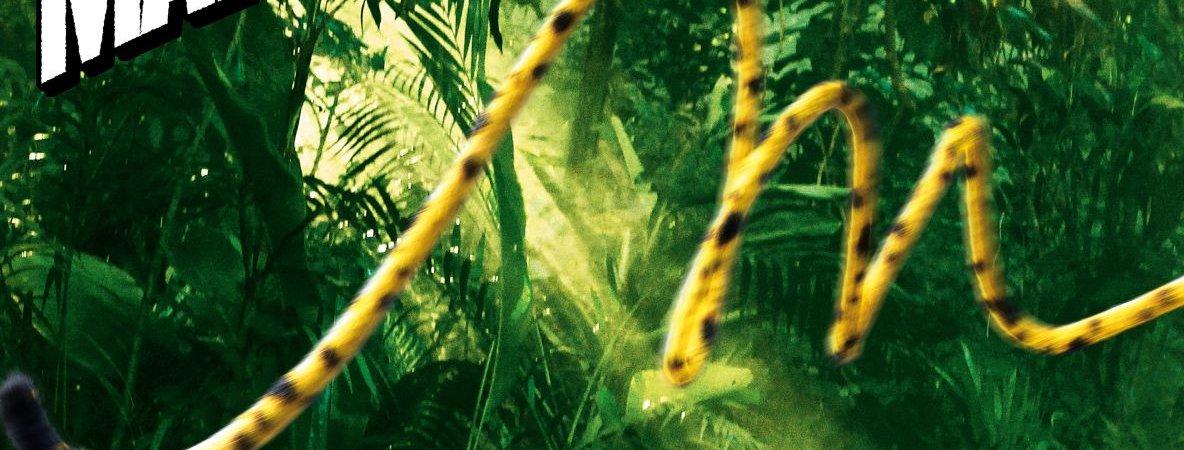 Photo du film : Sur la piste du Marsupilami