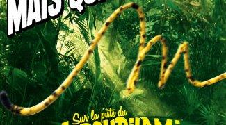 Affiche du film : Sur la piste du Marsupilami