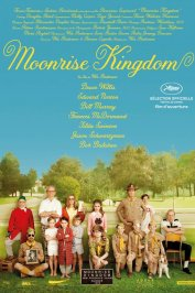 background picture for movie Moonrise Kingdom
