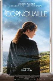 background picture for movie Cornouaille