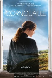 background picture for movie Cornouaille