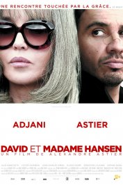 background picture for movie David et Madame Hansen