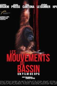 Affiche du film : Les mouvements du bassin