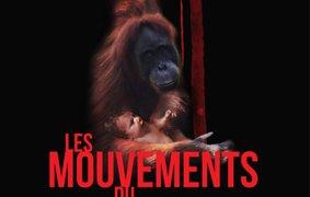 background picture for movie Les mouvements du bassin
