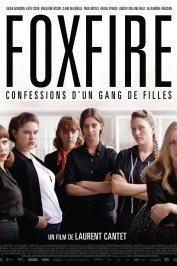 background picture for movie Foxfire, confessions d'un gang de filles