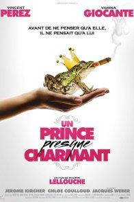 Affiche du film : Un Prince (presque) charmant