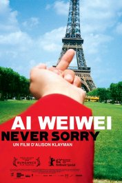 background picture for movie Ai weiwei : Never sorry