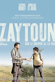 background picture for movie Zaytoun