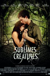 background picture for movie Sublimes Créatures